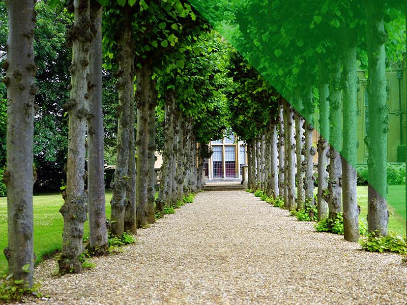 entretien jardin draguignan